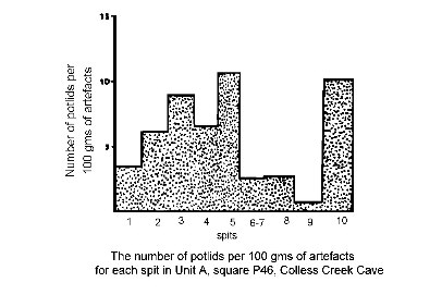 The Number Of Potlids Per 100 Grams Artefacts For Each Spit In Unit A Square P46 Colless Creek Cave